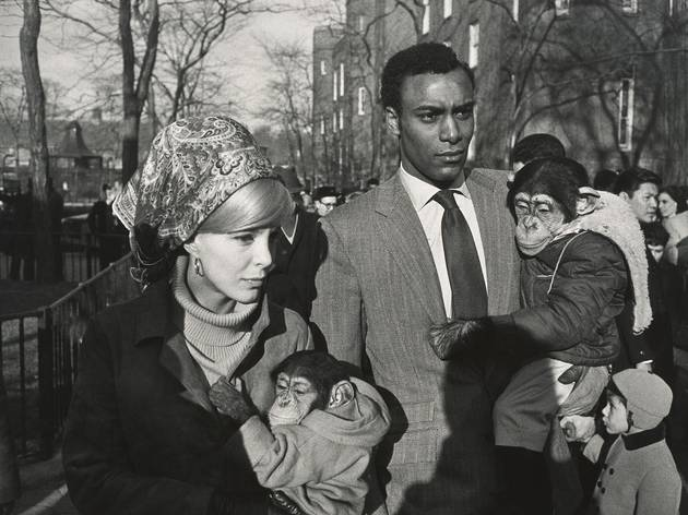 (© The Estate of Garry Winogrand / Courtesy Fraenkel Gallery, San Francisco / Photo : Don Ross)