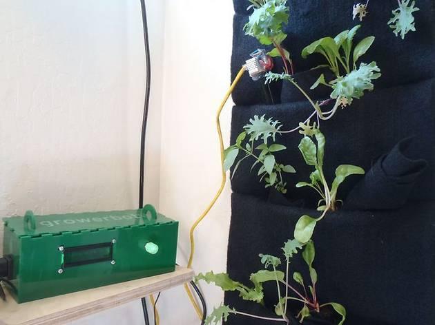 Growerbot