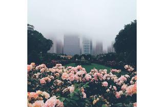(Photograph: @abiana_photography)