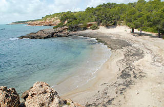 Platges de l'Ametlla de Mar
