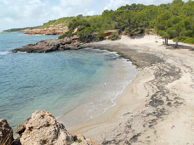 Les millors platges de Barcelona i Catalunya