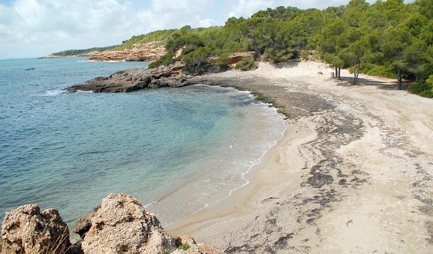 Guia de les platges de Barcelona i Catalunya