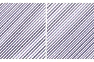 Bridget Riley ('Prairie', 1971/2003)