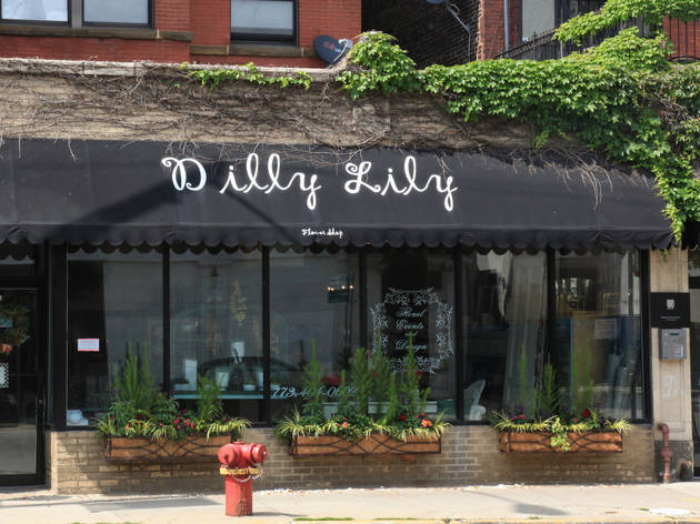 Dilly Lilly