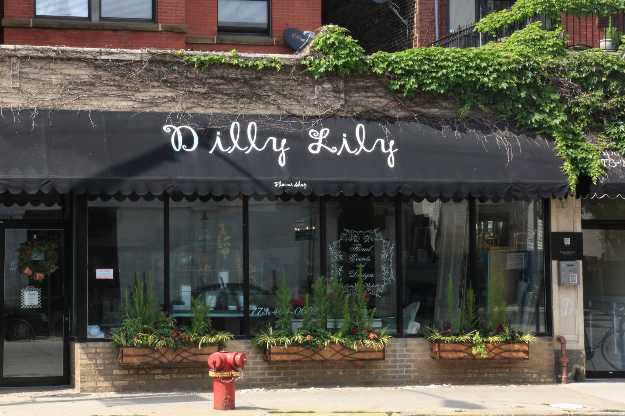 Flower shops in Chicago for Mother s Day Valentine s Day and more