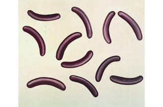(Tate Modern)