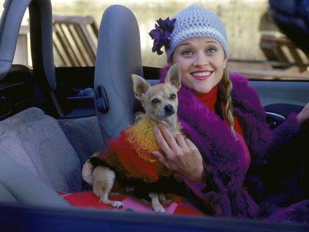 Reese Witherspoon Says Now Is the Perfect Time for 'Legally Blonde 3'
