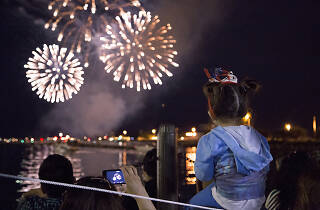 A fireworks display dazzles onlookers during Navy Pier's annual Fourth of July celebration.