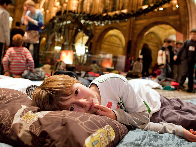 (Children's Dinosnores sleepover at the NHM © Kevin Webb/NHM Image Resources)