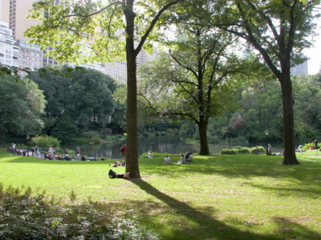 Delivery.com will now deliver food and beer in Central Park