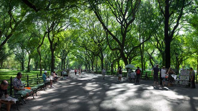 Central Park Moonlight Ride