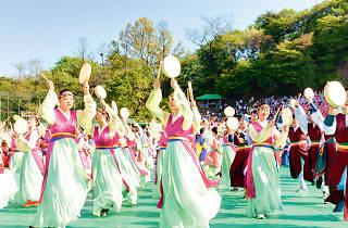 The Korea Day