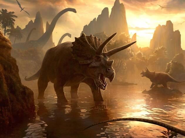 Segueix les passes del triceratops