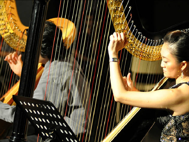 The Harp Academy