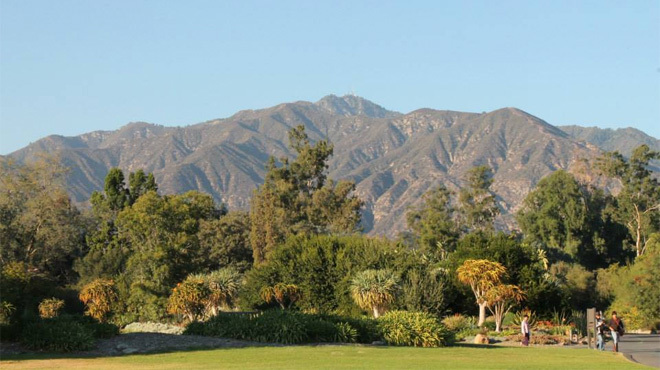 Photograph: Courtesy Los Angeles County Arboretum & Botanic Garden