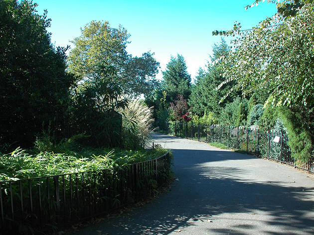 Narrows Botanical Gardens
