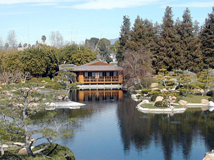 The Japanese Garden (TEMPORARILY CLOSED)