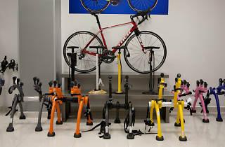 Trans Vision Bike