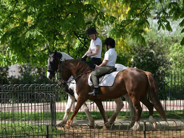 (Horse riding lessons © Greywolf, The Royal Parks)