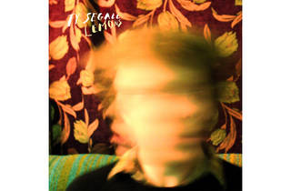 Lemons (2009):