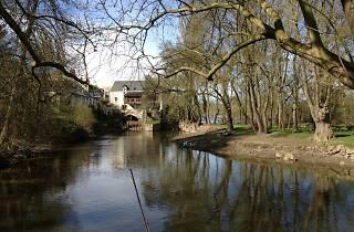 A walk along the river Thouet from Saumur to Saint-Hilaire-Saint-Florent