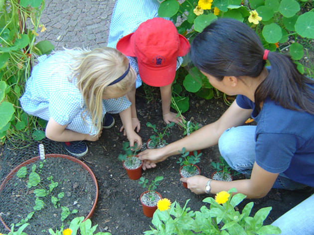 Half Term Activities at Chelsea Physic Garden