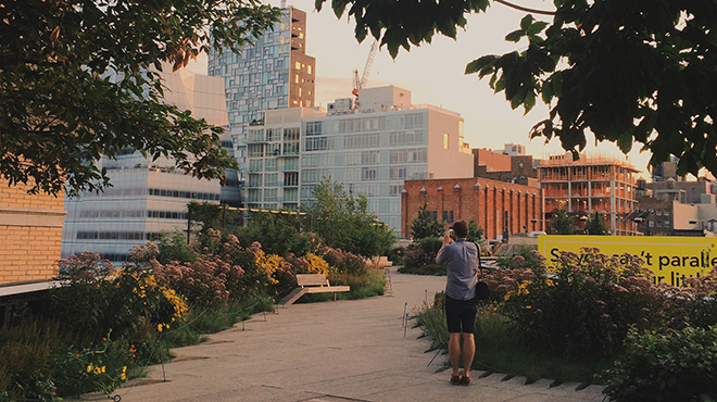 24 beautiful photos of the empty High Line at sunrise
