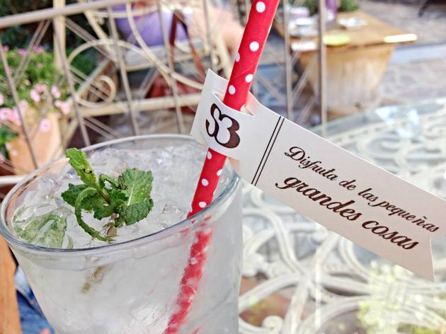 El Jardín Secreto De Salvador Bachiller Bars And Pubs In