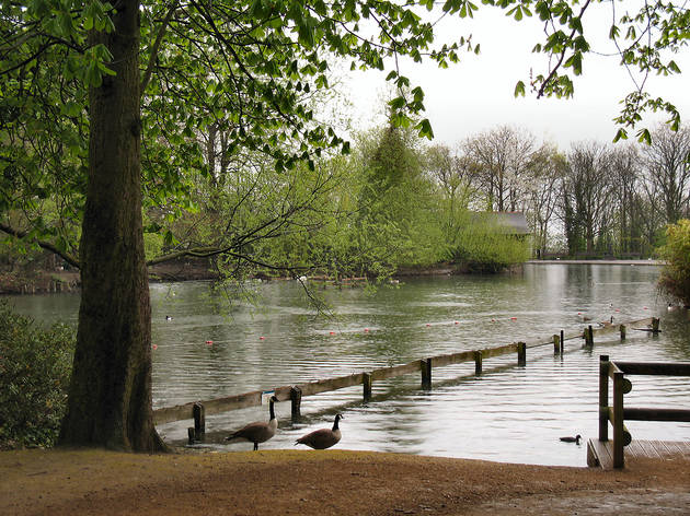 Alexandra Park boating lake