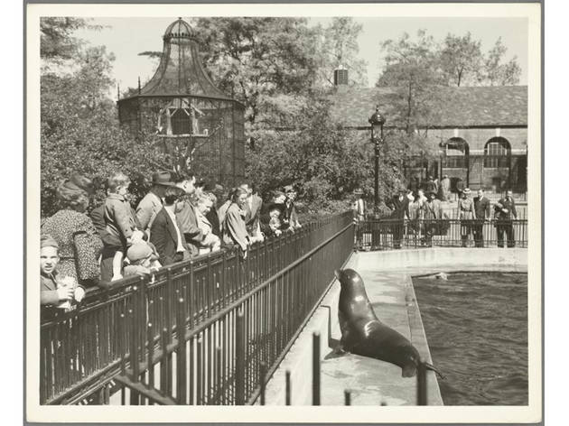 Historical photos of NYC parks