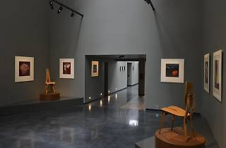 (Installation view of 'Mollino-Mapplethorpe' at Hamiltons Gallery)