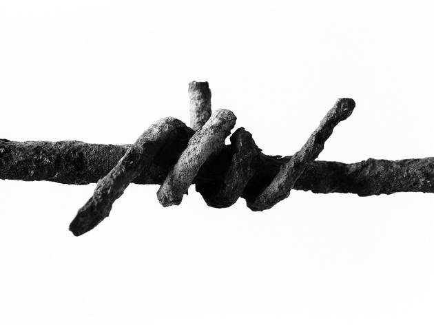 Peter Cattrell (Barbed Wire, found Serre, Somme)