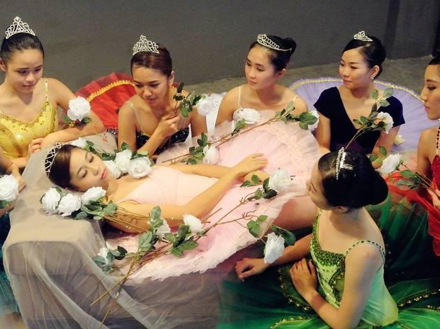 The Sleeping Beauty 2014