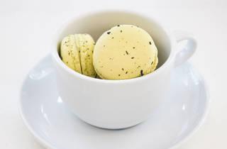 Macarrones de té verde  (Foto: Alejandra Carbajal)