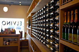 Elvino Wine