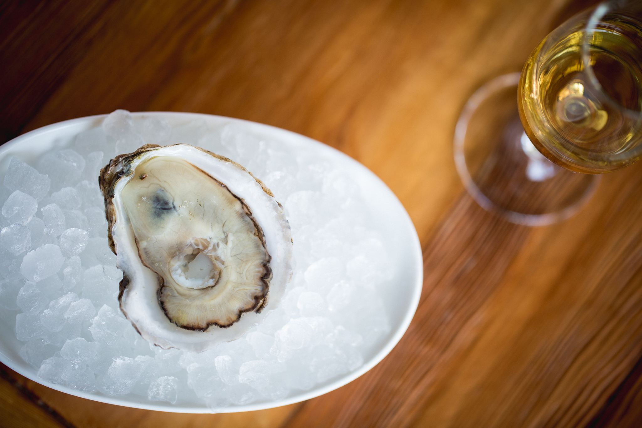 Oyster luge at Tipple & Brine
