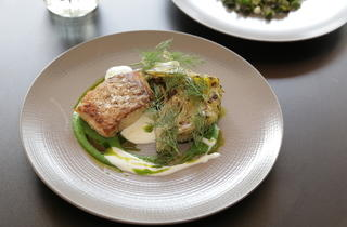 Sitka local seabass with dill, buttermilk and brassicas
