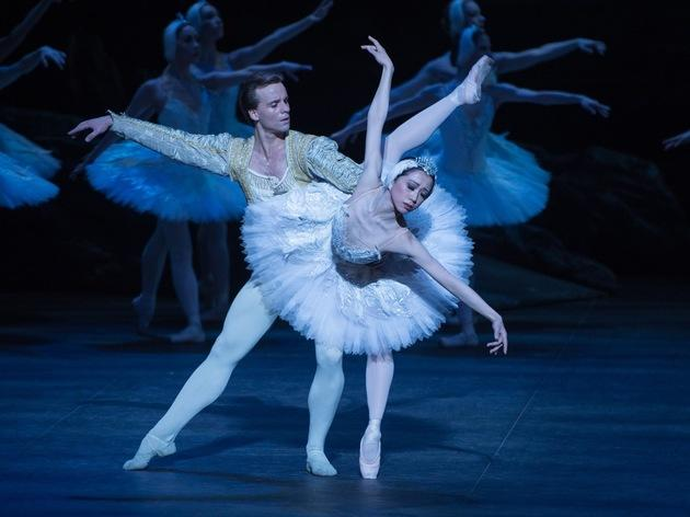 Christmas dance shows 2014 - swan lake