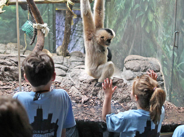 Columbus Day Zoo Camp: Animal Underdogs