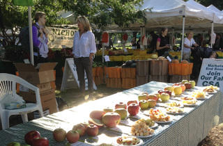 Green City Market Apple Festival