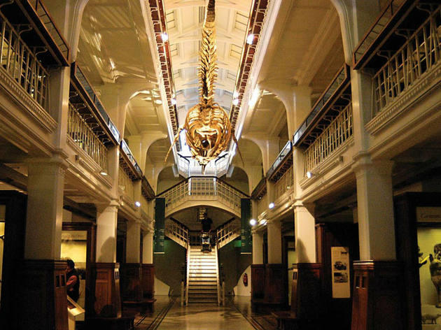 Manchester's most magical museums