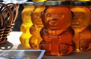 Honey Bee Days 2013 at  The Morton Arboretum.