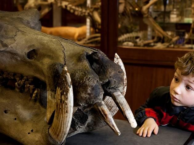 Explore Zoology
