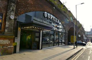 Gorilla, Manchester