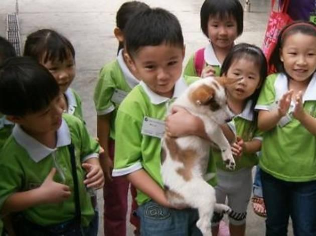 SPCA Family Carnival