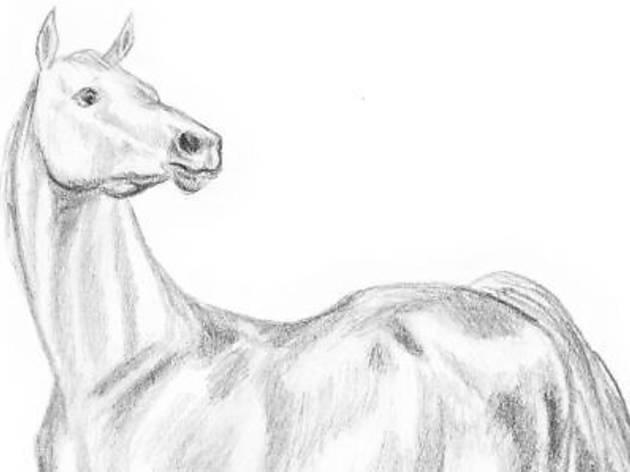 Develop drawing skills with Elspeth McEachern