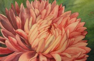 Flowers in Watercolour workshop