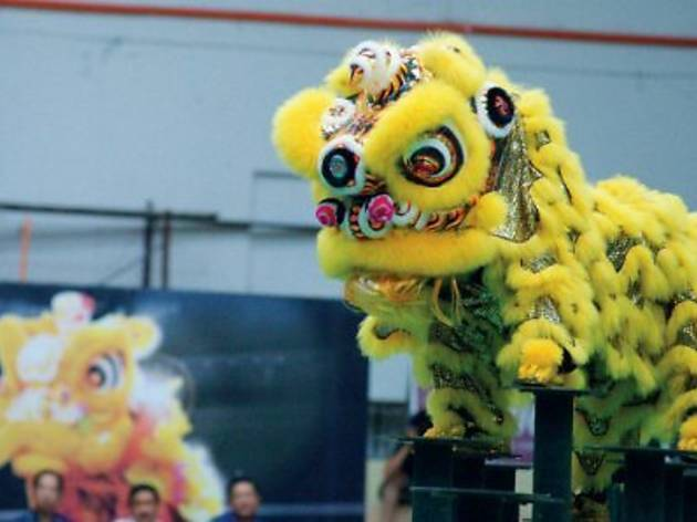 Traditional Lion Dance and Wushu Competition