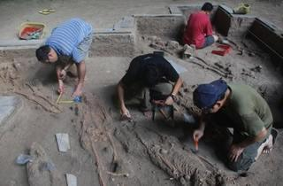 Archaeology and Cultural Heritage Conservation