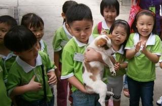 SPCA Penang